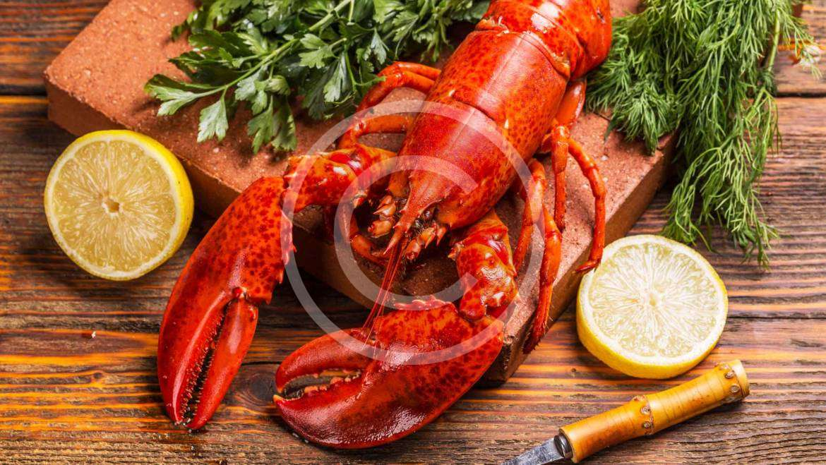Seafood and international trade law